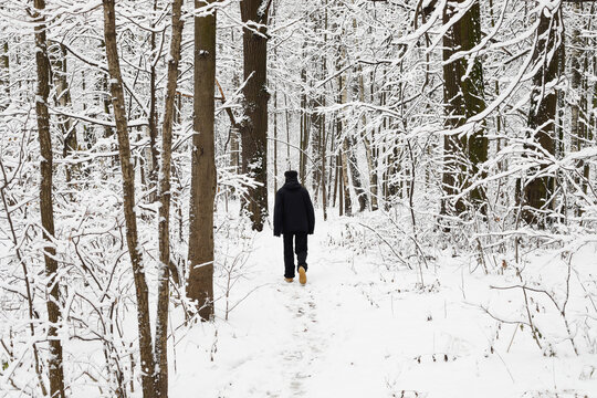 An old man walking in the wood during winter with the snow