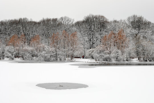 A frozen forest after a snowfall in winter on an iced pond. Hole in the ice.