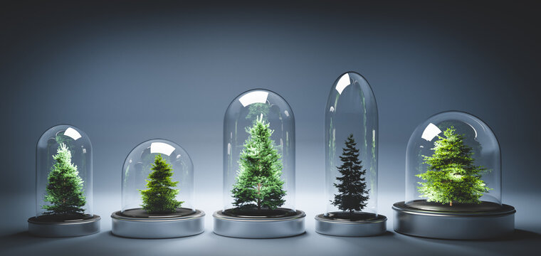 Collection of Christmas trees in glass jars