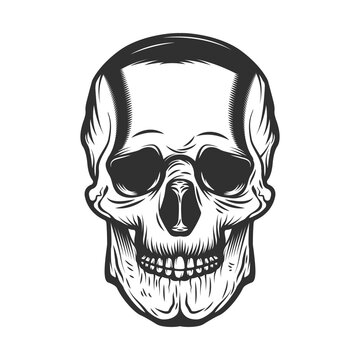 Vintage Hand drawn Human Skull