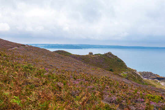 Scenic view of the Atlantic coast with lilac heath meadows at Cape Erquy in Brittany in northern France
