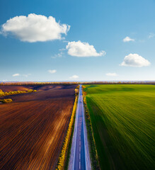 Wall Mural - Aerial photography of rural road passing through agricultural land and cultivated fields.
