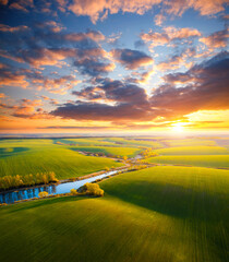 Wall Mural - Picturesque aerial photography of agrarian land in sunlight in the evening. Top view drone shot.