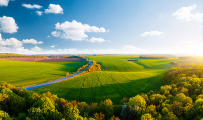 Wall Mural - Scenic aerial photography of rural road passing through agricultural land and green fields. Top view drone shot.