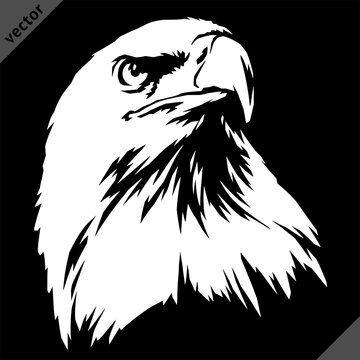 black and white linear paint draw eagle vector illustration art