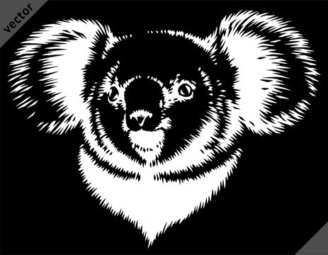 black and white linear paint draw koala vector illustration art