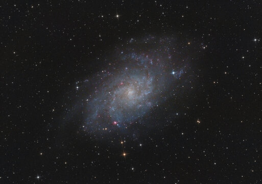 The Messier 33 galaxy in Triangulum constellation, with many stars as background in the deep space, taken with my telescope.