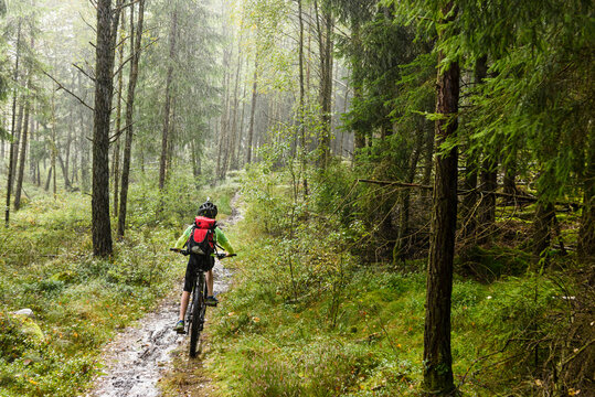 Boy cycling in forest, Sweden