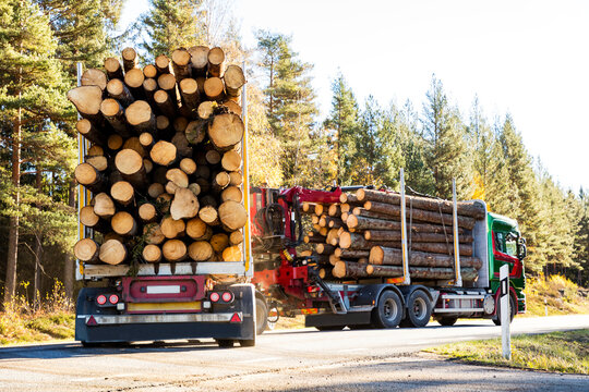 Lorries transporting logs, Sweden