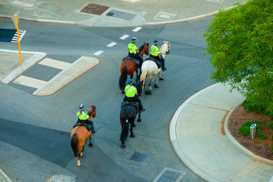 Mounted Police in the City