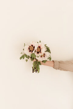 Female hand hold white peonies flowers bouquet on white wall. Minimalistic floral composition.