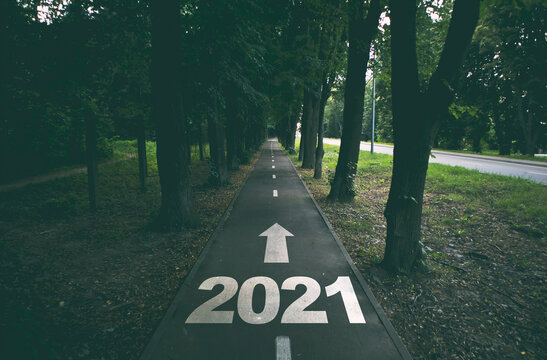 Empty road in the forest to upcoming 2021