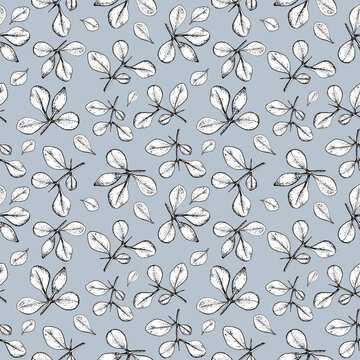 seamless retro pattern branches with leaves of barberry on a blue background