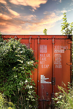An old abandoned container overgrown with plants. The number of the container is not a real number.