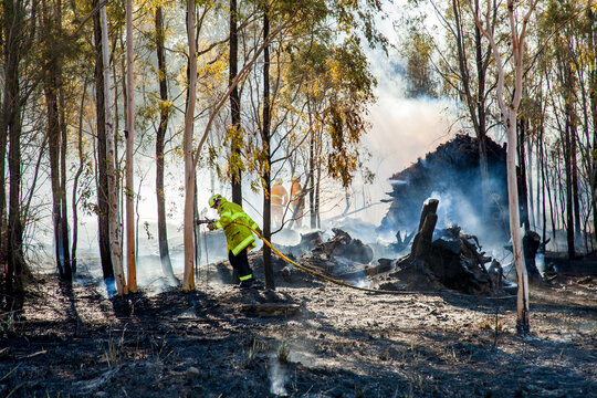 Firefighters fighting bush fire with hose among trees and smoke