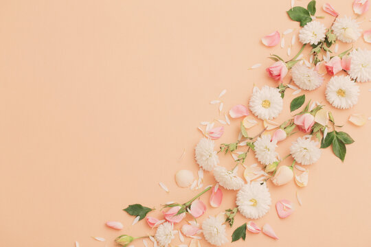pink and white flowers on paper  background