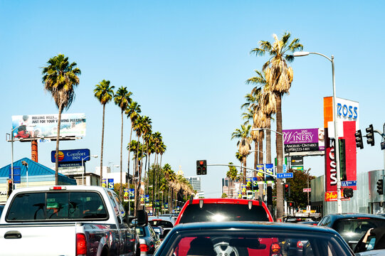 Cruising Sunset Blvd in the middle of the day