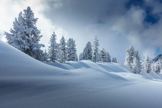 Weihnachtliche Winterlandschaft als Hintergrundbild