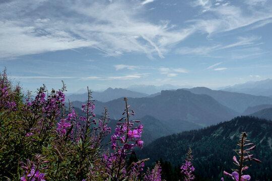 Mountain hiking tour to Hochgern mountain, Bavaria, Germany