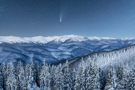 Fantastic winter landscape glowing by star light. Dramatic wintry scene with snowy trees and comet in night sky. Carpathians, Europe