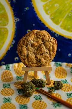 """Cannabis Canvas"" A cannabis cookie on an easel surrounded by green cannabis buds implying the creative ways to consume cannabis."