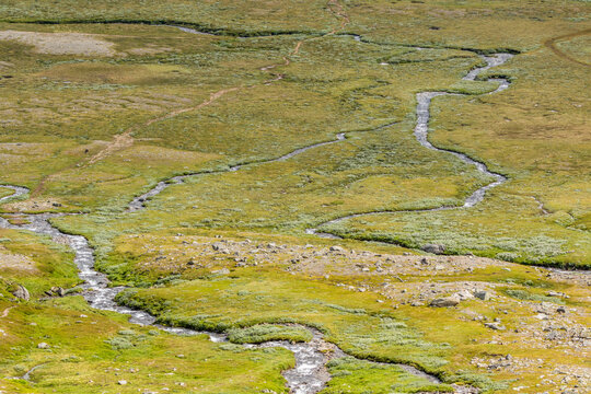 Meandering streams in the high country