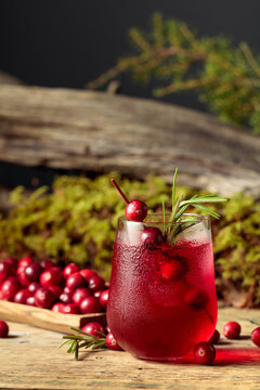 Cranberry cocktail with natural ice and rosemary in frozen glass.