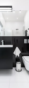 Black and white bathroom, vertical panorama