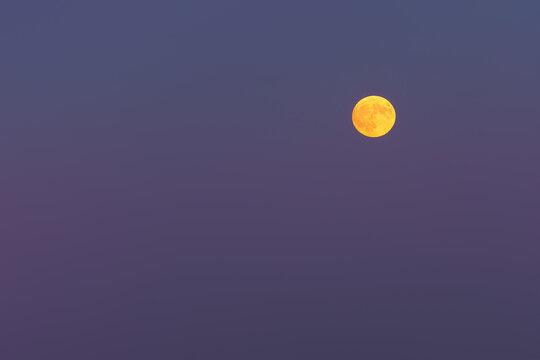 yellow full moon on purple sky at twilight