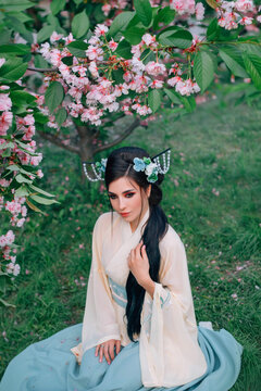 Japanese charming woman sits on green grass blooming spring garden. Pink tree flowers. Portrait mixed race Asian Caucasian young girl. Chinese beige blue national costume. Brunette long hair, kanzashi