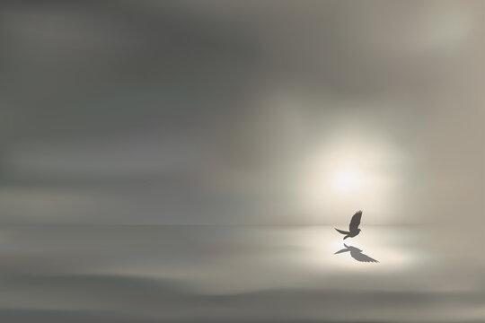 Paysage panoramique montrant un paysage maritime symbolisant la tranquillité, avec un oiseau volant au ras des flots, devant un soleil qui apparaît à l'horizon.