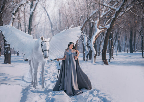 Fantasy woman elf goddess walk with mythical white horse Pegasus with white wings in winter forest. Long medieval in dress, grey cape. silver diadem tiara. Fairy tale Snow queen. Girl elf princess.