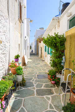 Cobbled narrow street decorated with flower pots in Chora on Folegandros. Cyclades Islands, Greece