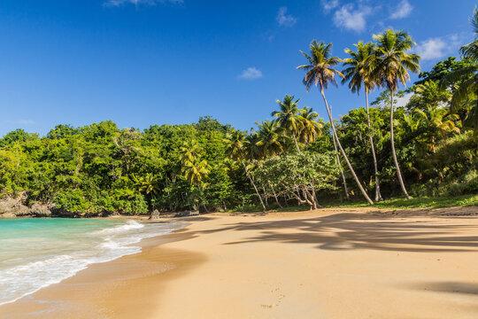 Beach in Las Galeras, Dominican Republic