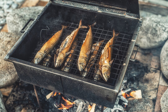 Roasted fish, on a picnic.