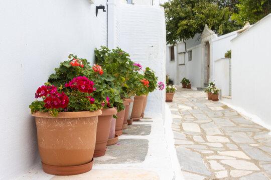 Mit Marmor gepflasterte und mit Blumen geschmückte Gasse im Bergdorf Pirgos auf der giechischen Kykladeninsel Tinos