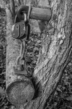 old rusty padlock on a rural barrier