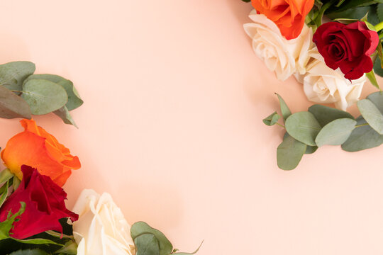 White, red and orange roses with green leaves on pink background