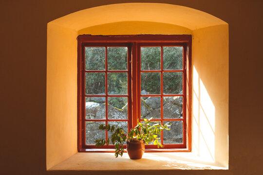 Beautiful light through the window.
