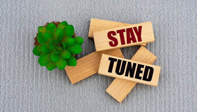 STAY TUNED - words on wooden blocks on gray background and cactus