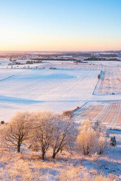 Frosty trees in a scenics winter landscape