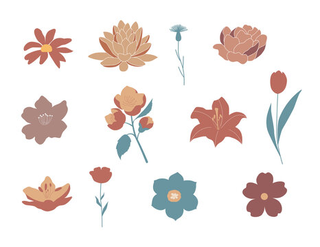 Flowers abstract set, colorful floral elements for logo, invention, greeting cards, terracotta palette