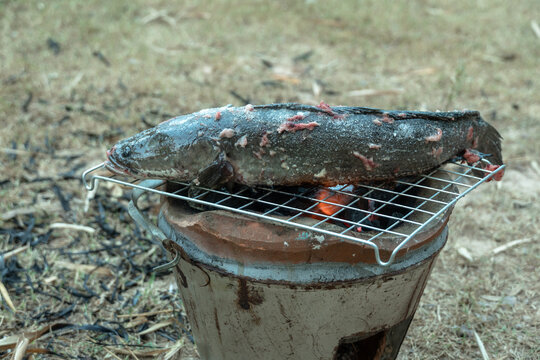 .Way of life of rural people Make a fire with dry twigs, dry leaves next to the house to bbq fresh fish