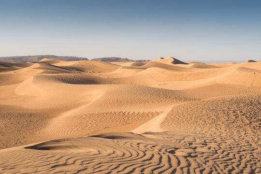 Cordon de dunes du désert marocain