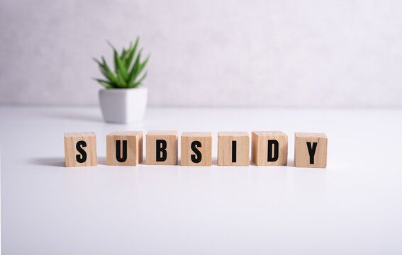 subsidy - the word on wooden cubes on white