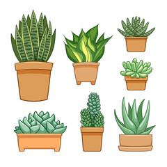 Succulent in flowerpot. Hand drawn set collection.