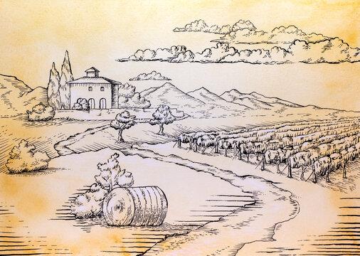 Rural landscape ink drawing