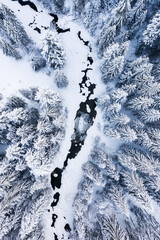 Winter chill. Natural winter landscape from air. Aerial view on river and forest in winter time....