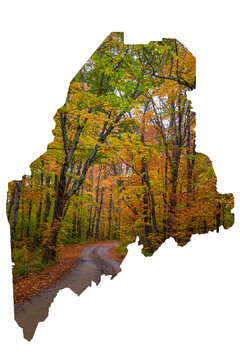 Maine State shape with forest, moose, beach scenes