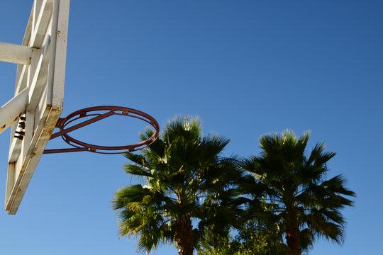basketbal game